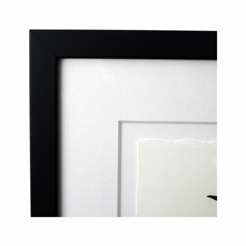 Frame with Float Mounted Ragged Image