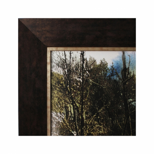 Frame with No Glass
